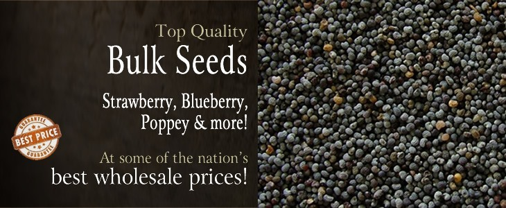 bulk-seeds.jpg